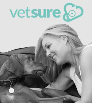 Vethelp Insurance
